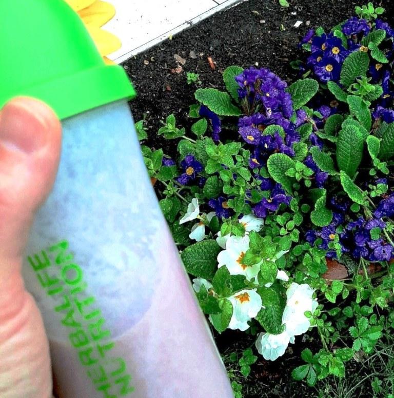 Herbalife shake ile her gün çiçek gibi geçsin.