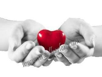 kalp ve koroner sistem