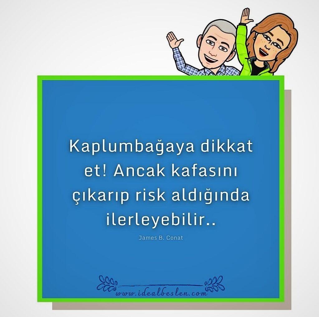 Risk alırsan ilerlersin!